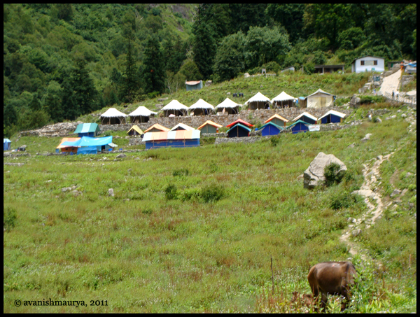 Tented Accomodation:CAMP Ghangaria by Sarovar Hotels