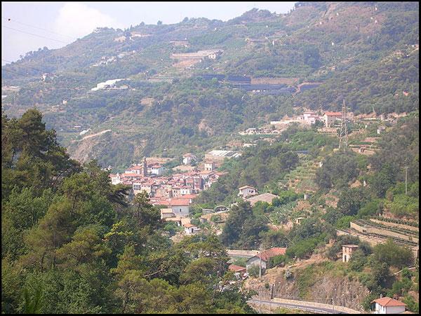 Oria-View