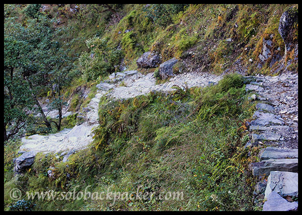 Trail from Didna Village to Neel Ganga River
