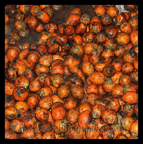 Beatel Nuts