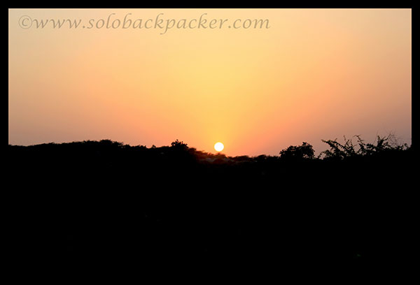 Sunset From Asola Bird Sanctuary, New Delhi