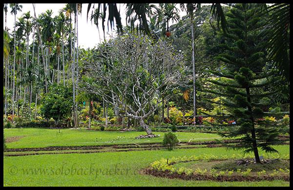 Organic Horticulture Farm of ICAR