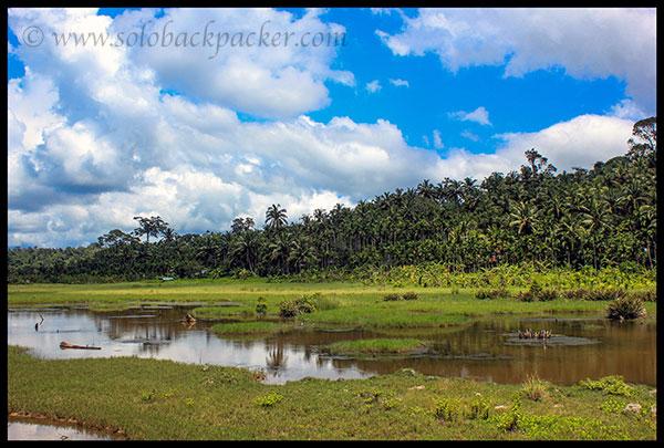 Landscape near Wandoor