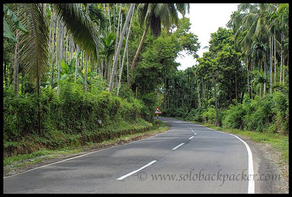 Road to Wandoor