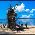 Exploring Around Port Blair: Wandoor and Mahatma Gandhi National Marine Park