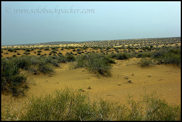 The Great Desert of Thar