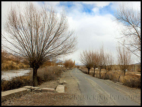 Road Passing Through Spituk Village Along The Indus River
