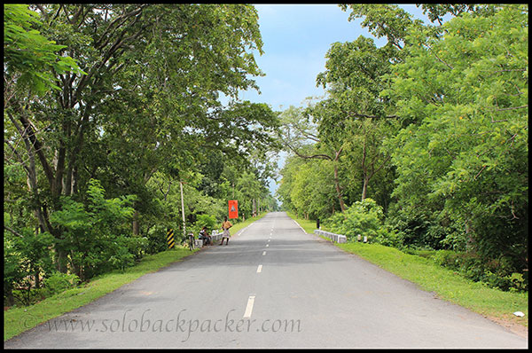 A Well-Maintained Road Leading to Barnawapara in Chhattisgarh