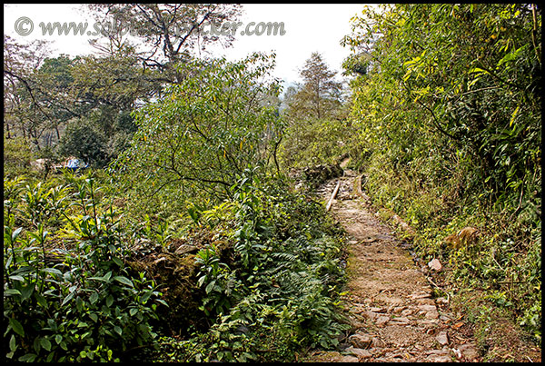 Hiking Trail to Dubdi Monastery