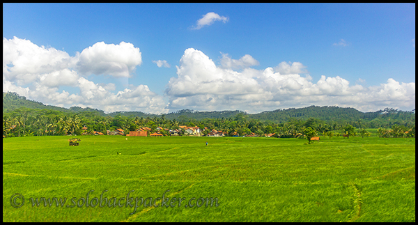 A Village On The Way to Yogyakarta