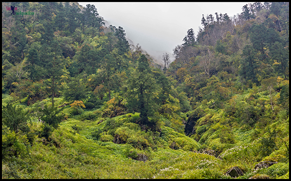 Lush Green Mountains Along The Trekking Route