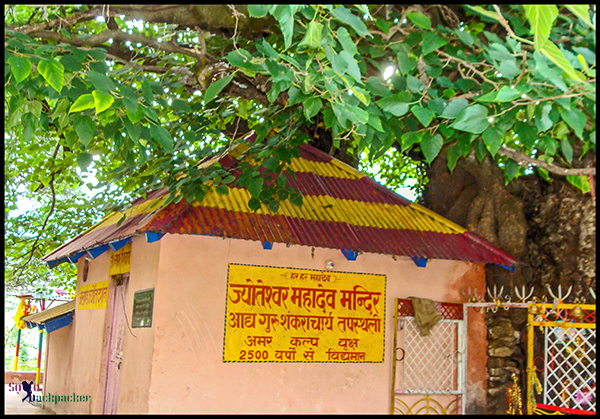 Temple Under The Kalpavriksha